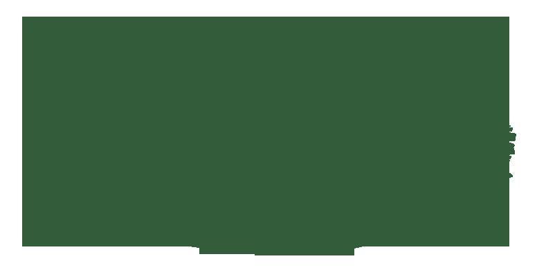 MN-Northwoods Logo