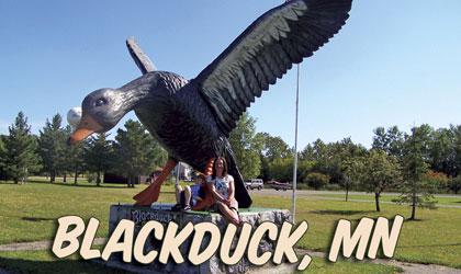 blackduck community